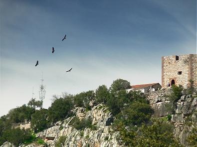 Extremadura celebra el Día Mundial del Medio Ambiente con actividades en espacios naturales