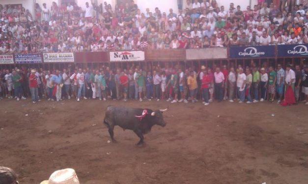 La lidia del astado de la Peña Junta de Defensa concluye en la Plaza de España sin heridos por asta de toro