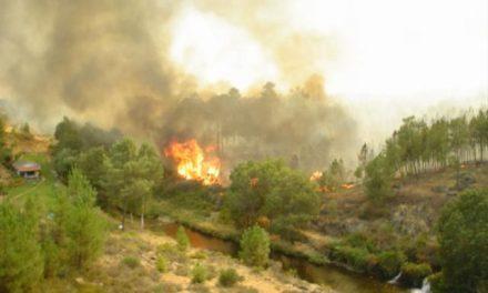 Efectivos del Plan INFOEX trabajan para controlar el incendio declarado cerca de Puebla del Maestre