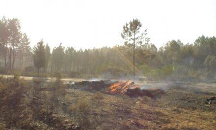 Los efectivos del Infoex dan por controlado el incendio de Puebla del Maestre que ha afectado a 54,3 hectáreas