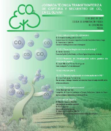 Medio Ambiente organiza una jornada centrada en la importancia del cultivo del olivar como reductor de CO2