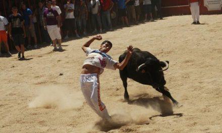 El consistorio de Moraleja pide responsabilidad a los mozos durante los festejos taurinos populares