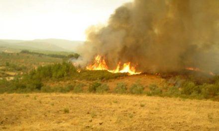 Un incendio provocado calcina una hectárea en la entrada del municipio serragatino de Acebo