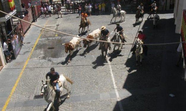 Arrancan las fiestas taurinas de San Buenaventura en Moraleja con importantes medidas de seguridad