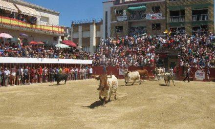 Los «patablanca» de Monteviejo protagonizan un festejo de casi 17 minutos con dos encierros en Moraleja