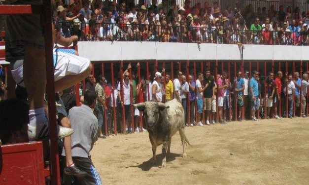 """Los """"patablanca"""" de Monteviejo protagonizan un festejo de casi 17 minutos con dos encierros en Moraleja"""