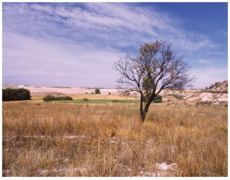 APAG Extremadura ASAJA afirma que los créditos no están llegando a los afectados por la sequía