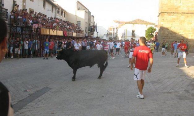 Los dos últimos toros de San Buenaventura en Moraleja cierran unas fiestas marcadas por la ausencia de heridos