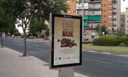 Una campaña solidaria en las marquesinas concienciará a los ciudadanos de Cáceres sobre el comercio justo