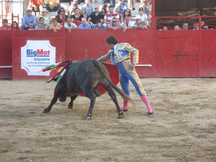 Reses de la ganadería de «El Madroñal» serán lidiadas en un festejo de rejones en la localidad de La Adrada