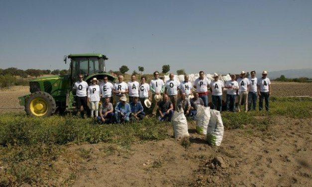 La Diputación de Cáceres entrega 10.000 kilos de patatas al Club Rotary gracias a un proyecto solidario