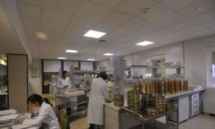 El Laboratorio Agroalimentario recibe la acreditación oficial para analizar proteínas en piensos
