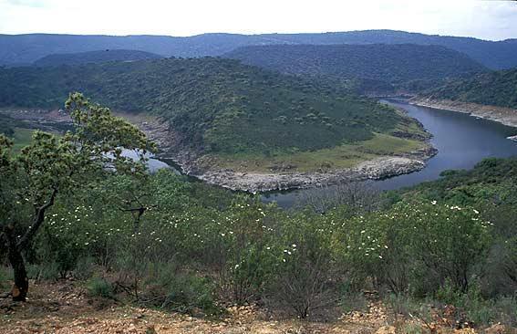 El Ministerio de Agricultura valora los Parques Nacionales como una forma de conservar la biodiversidad