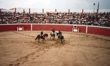 La ganadería Castillejo de Huebra de Portaje llegará a Zarza la Mayor para la novillada de rejones
