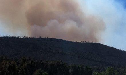 Efectivos del Infoex declaran estabilizado el incendio de Gata y medios terrestres siguen trabajando en la zona