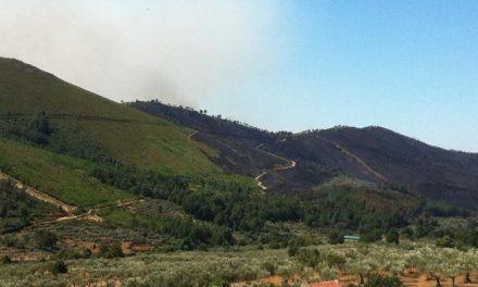 El Sistema Europeo sobre Incendios Forestales cifra en 736 las hectáreas calcinadas en el incendio de Gata
