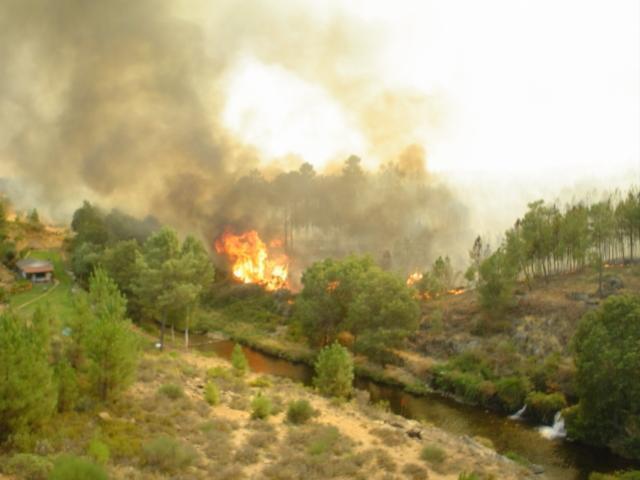 Abierto el concurso para la contratación del servicio de vigilancia de incendios forestales por un millón de €