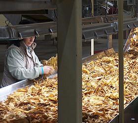 Cetarsa facturó 72,3 millones de euros en 2011 y ganó 1,2 millones tras comprar 23.801 toneladas de tabaco