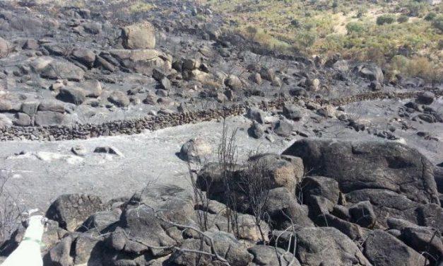 Varios focos, ya extinguidos, afectan durante la noche a Montehermoso, Piornal y Villanueva de la Vera