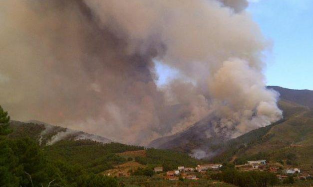 Los incendios calcinan 153.159 hectáreas en lo que va de año donde se han producido 31 grandes fuegos