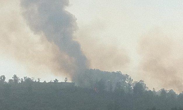 El incendio de Valverde del Fresno ha afectado a 185 hectáreas principalmente de pinar y matorral