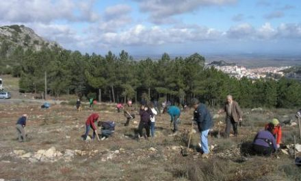 Los montes calcinados de Las Hurdes se reforestarán con un sistema «piloto» de plantación por cuadrículas