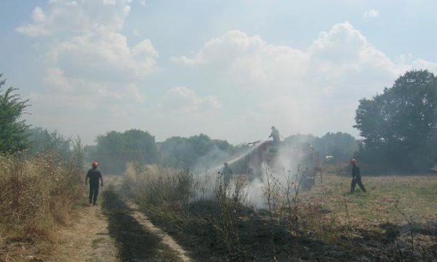 SEO/BirdLife recuerda que si Extremadura permite la quema de rastrojos podría perder las ayudas de la PAC