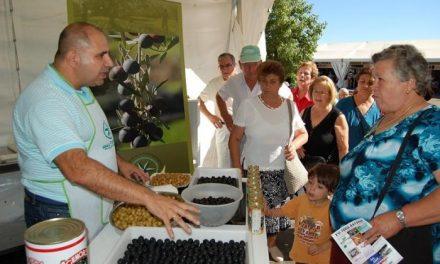 La DOP Gata-Hurdes y Acenorca enseñan a diferenciar aceitunas y aceite en la Feria Rayana