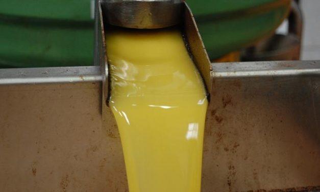 La Milagrosa de Monterrubio ha exportado su aceite de la última campaña a una decena de países
