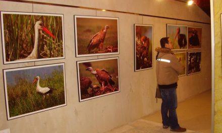 El fotógrafo bilbaíno Antonio López expone en la oficina de turismo y en el Museo Pérez Comendador de Hervás