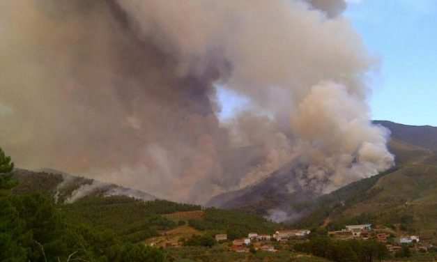 La superficie quemada supera en 80.000 hectáreas el promedio de los últimos cinco años
