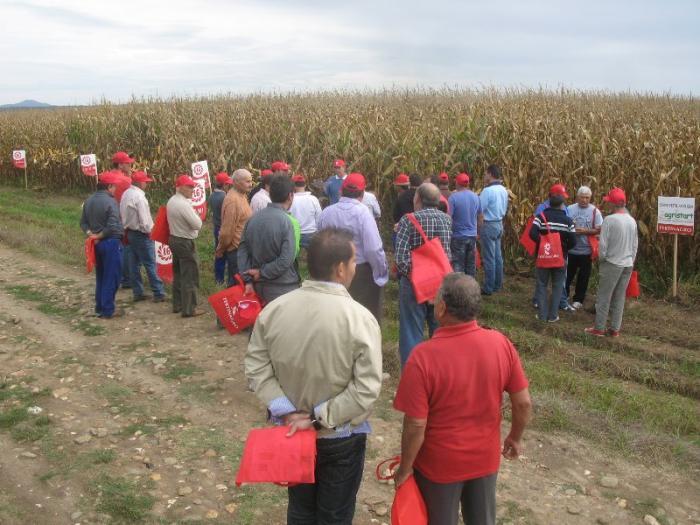 Más de medio centenar de agricultores de la provincia visitaron un campo de ensayo de maíz en Moraleja