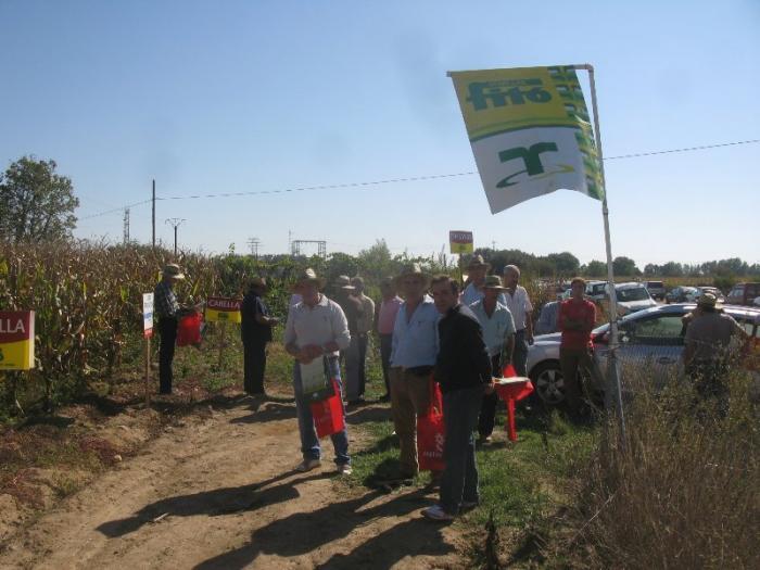 Medio centenar de agricultores participa en un campo de ensayo de cultivo de maíz en Moraleja