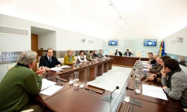 La Asamblea aprueba por unanimidad la propuesta de IUV-SIEX de que la comisión de FEVAL sea pública