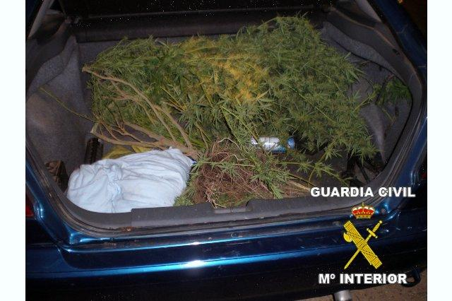 La Guadia Civil sorprende a tres jóvenes cuando transportaban marihuana que acababan de robar