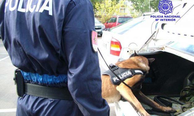 La Jefatura de Policía de Extremadura instruye a perros para detectar billetes de curso legal