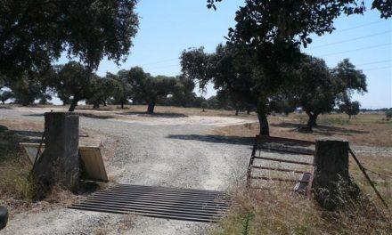 La Junta de Extremadura aún no ha comenzado las obras del nuevo polígono de Navalmoral de la Mata