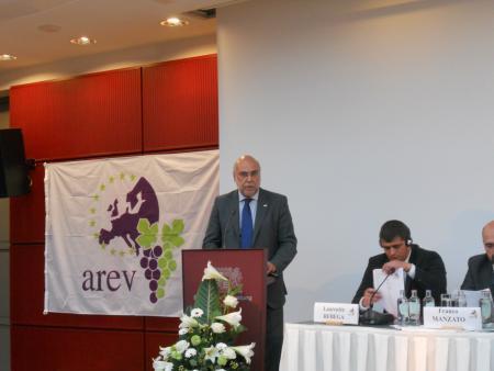 El Gobierno de Extremadura rechaza la eliminación del actual sistema de derechos de plantación de viñedos