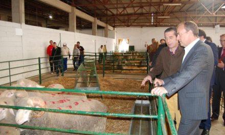 Monago advierte que Extremadura luchará por una norma de calidad del Ibérico con dos categorías