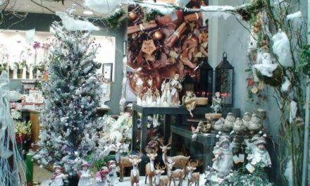 Abierto el plazo para votar los mejores escaparates navideños de la localidad de Moraleja