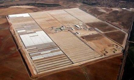 Ibereólica consigue la autorización ambiental para su termosolar de Olivenza con 49,9 Mw de potencia