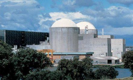 Ecologistas en Acción denuncia la tercera parada de la Central Nuclear de Almaraz I en tan sólo 9 días