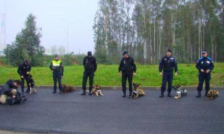 Las Policías Locales de Extremadura se reforzarán con unidades caninas en detección de estupefacientes