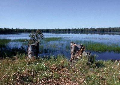 El Ministerio de Agricultura anuncia la incorporación de 30 ecosistemas al Inventario Español de Zonas Húmedas
