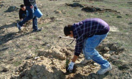 Adesval desarrollará esta primavera acciones medioambientales en el Valle del Alagón