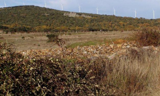 Grupos ecologistas de Trasierra consideran que el centro de cría en cautividad del lince será un fracaso
