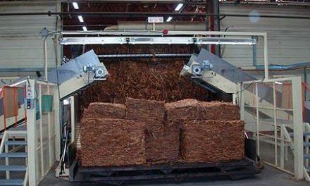 Extremadura organiza un acto en Bruselas en defensa del sector tabaquero ante la reforma de la Directiva