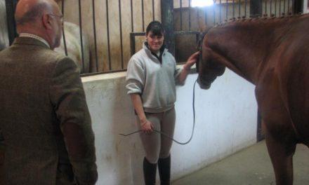Extremadura apuesta por la formación de alumnos con caballos de carrera con un acuerdo con los hipódromos