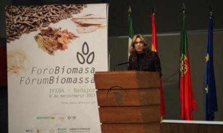 Extremadura apuesta por la biomasa como una de las alternativas más eficaces para una energía competitiva