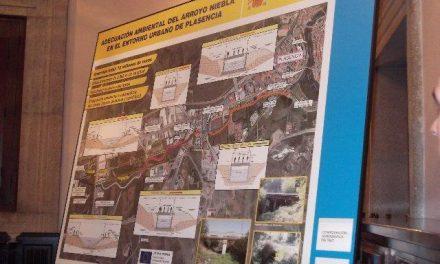 Agricultura adjudica por 7,5 millones de euros las obras de adecuación ambiental del Arroyo Niebla en Plasencia